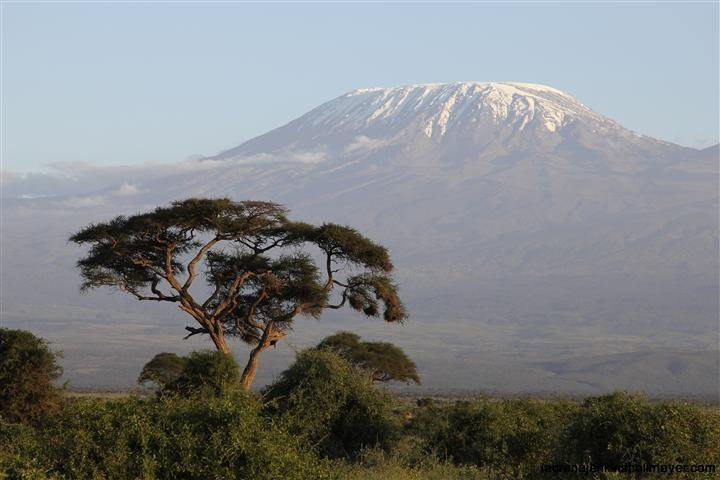 Mt Kilimanjaro at Sunset
